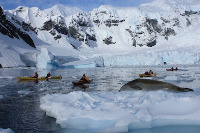 antarctica-kayaking-tours