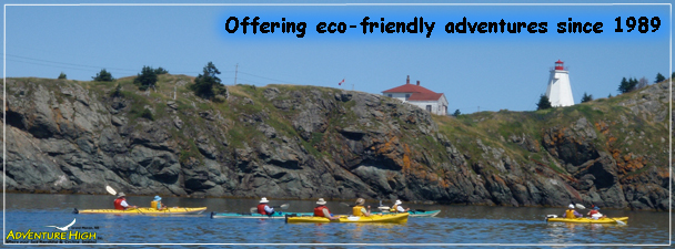kayaks-touring-light-house.jpg