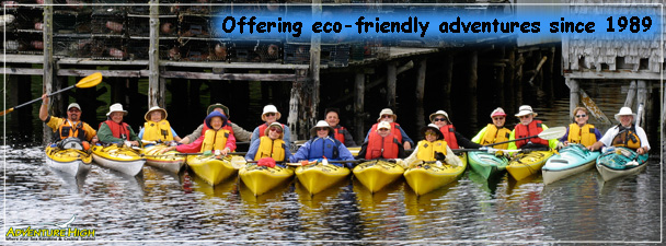 ocean-kayaking-group-tours.jpg