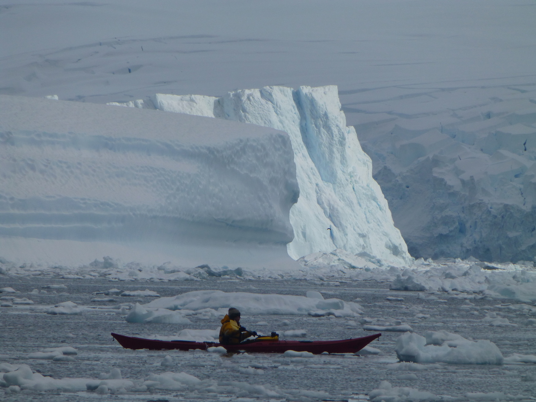Antarctica-Kayaking2